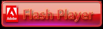 Adobe Flash Player 32 Bit Chip